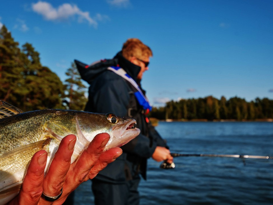 Opastettua kuhan viehekalastusta läntisen Suomenlahden saaristossa ja eteläisen Suomen suurimmilla järvillä ammattitaitoisen kalastusoppaan kanssa.